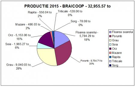 Informatii Braicoop activitate 2015